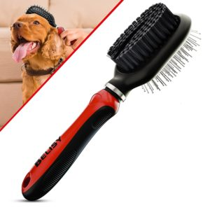 meilleure-brosse-chow-chow